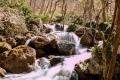 Porro_Luca_1_Chiare, fresche et dolci acque