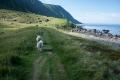 SANTAGATI_CINZIA_3_Una passeggiata nel verde