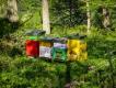 Somma_Luisa_1_la casa delle api in Val D_Aosta