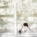 portfolio-uno-sguardo-aldila-pino-farcomeni-09