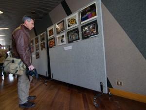 Visitando la mostra - 4 (di Paolo S.)