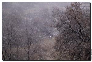 La neve nella Valle dei Casali