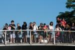 Ponte di Via delle Terme di Tito