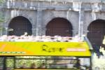 Roma, sightseeing #2