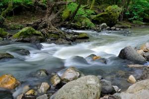il mormorio del torrente montano