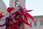 Peperoncini ..irrispettosi. Piazza Navona