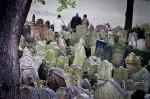 Cimitero Ebraico di praga (©  Cavatorta Guido)