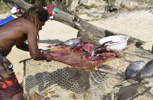 Antille - Guadalupe - Sfilettamento sulla spiaggia del pesce pescato