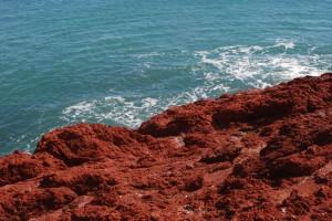19--Punta Tombo  DSC_0318w