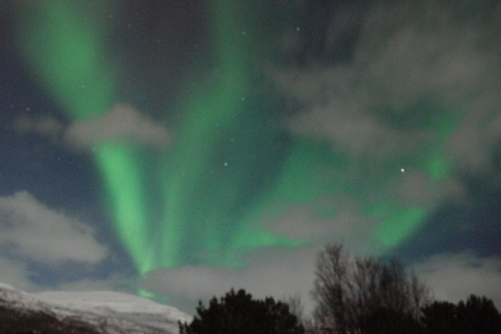 09-_-aurora-boreale-16_3_2019